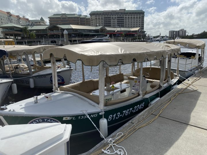 Things to do in Tampa